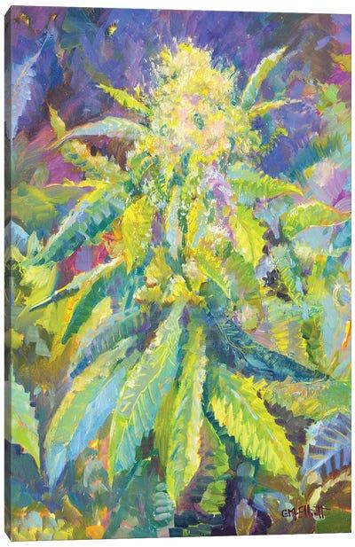 Haighleigh's Hope Canvas Art Print