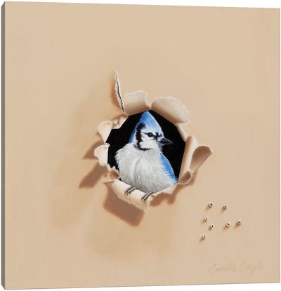 Blue Bandit Canvas Art Print
