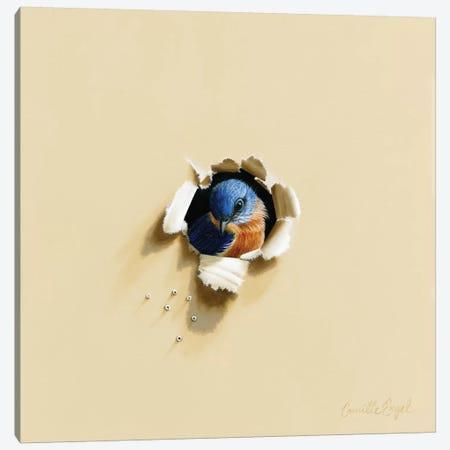 Camera Shy Canvas Print #CEN13} by Camille Engel Canvas Art
