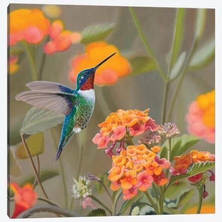 Color My World Canvas Print #CEN17} by Camille Engel Canvas Art Print