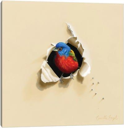 Dazzling Drop-In Canvas Art Print