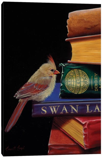 Feathers And Fiction Canvas Art Print