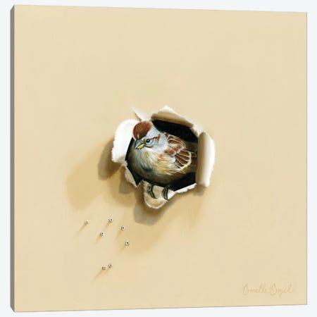 Fine Feathered Friend Canvas Print #CEN22} by Camille Engel Canvas Art Print