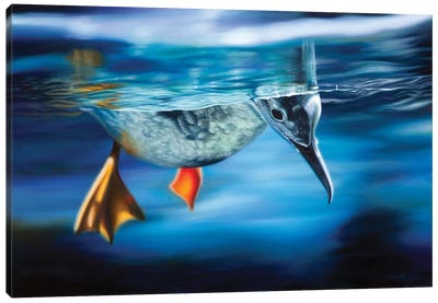 Floating Between Two Worlds Canvas Art Print