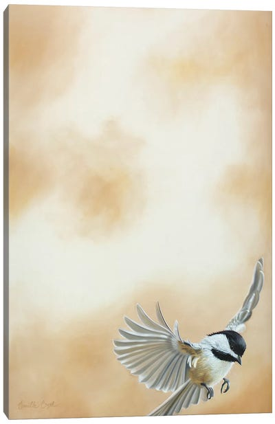 Flying High II Canvas Art Print
