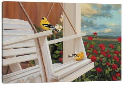 Front Perch Swingers Canvas Art Print