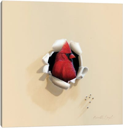 Handsome Red Head Canvas Art Print