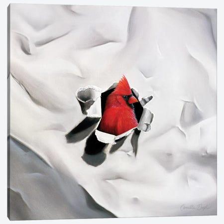 Handsome Redhead II Canvas Print #CEN33} by Camille Engel Canvas Art