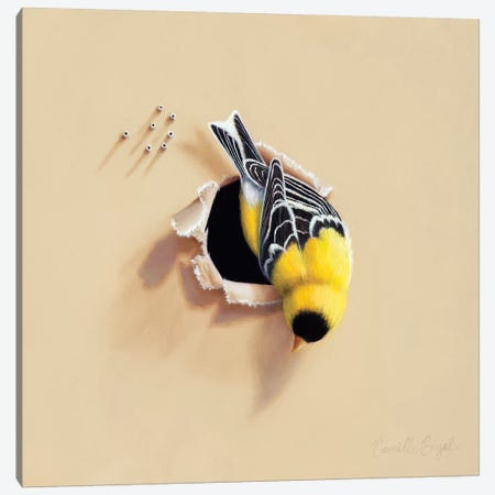 Hanging Around Canvas Print #CEN34} by Camille Engel Art Print
