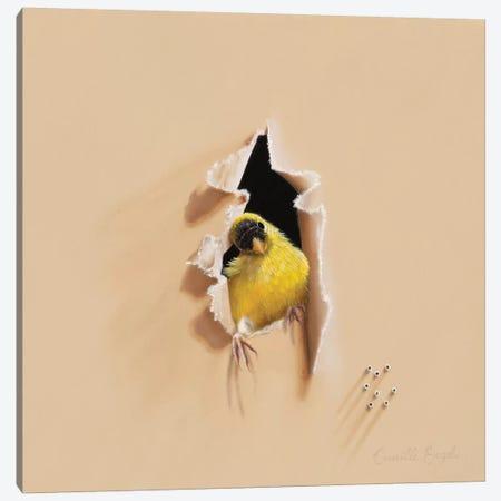 Hello, It'S Me! Canvas Print #CEN35} by Camille Engel Canvas Art Print