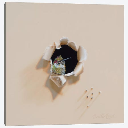 Jeweled Trespasser Canvas Print #CEN36} by Camille Engel Art Print