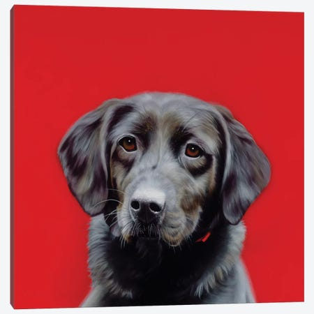 Loyal Friend Canvas Print #CEN40} by Camille Engel Canvas Art Print