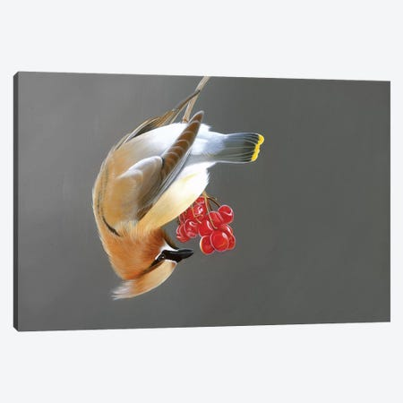Smooth Operator Canvas Print #CEN53} by Camille Engel Canvas Artwork