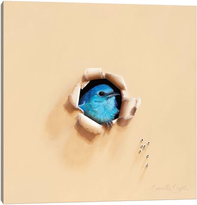 Song Sung Blue Canvas Art Print