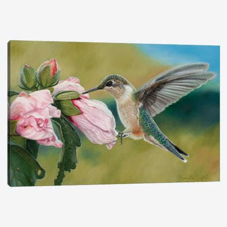 Tickled Pink 3-Piece Canvas #CEN59} by Camille Engel Canvas Artwork