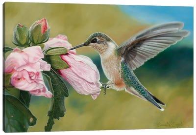 Tickled Pink Canvas Art Print