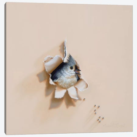 Tufted Trespasser Canvas Print #CEN62} by Camille Engel Art Print