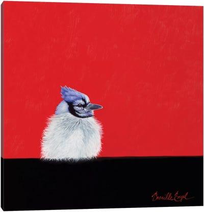 Baby Blue II Canvas Art Print