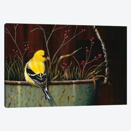 Yellow Bundle Of Joy 3-Piece Canvas #CEN72} by Camille Engel Canvas Artwork
