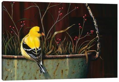Yellow Bundle Of Joy Canvas Art Print