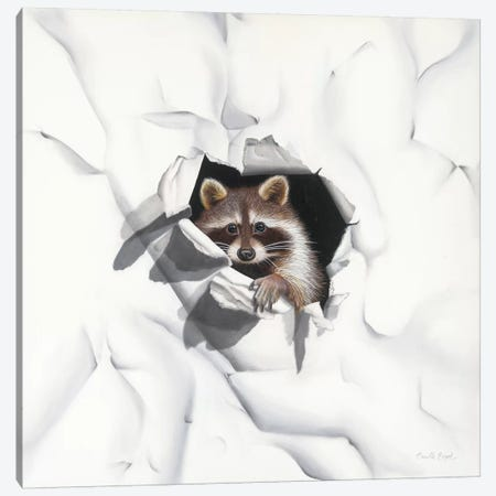 Racoon - Little Rascal Canvas Print #CEN73} by Camille Engel Canvas Art
