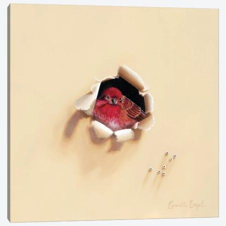 Bird En Rouge Canvas Print #CEN9} by Camille Engel Canvas Wall Art