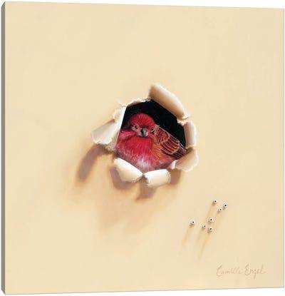 Bird En Rouge Canvas Art Print