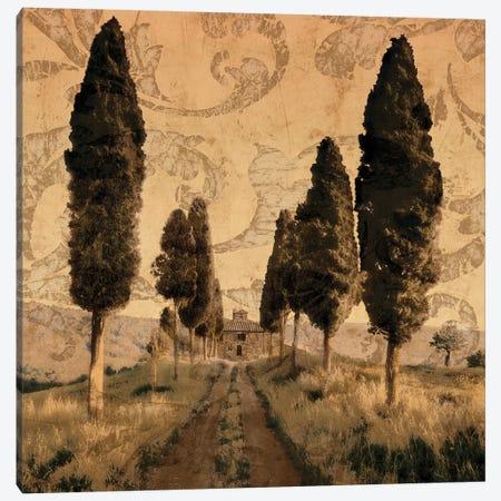 Tuscany I Canvas Print #CFL1} by Colin Floyd Canvas Print