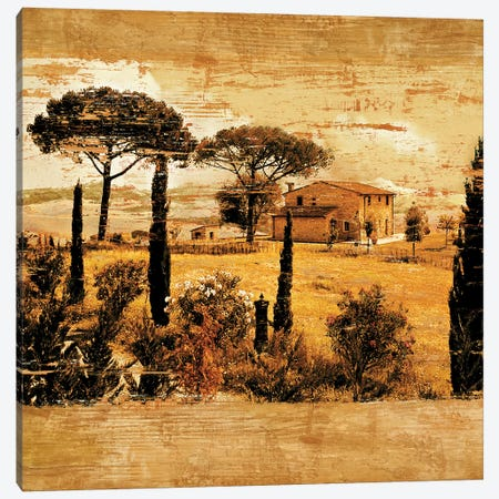Tuscan Countryside I Canvas Print #CFL3} by Colin Floyd Canvas Art Print