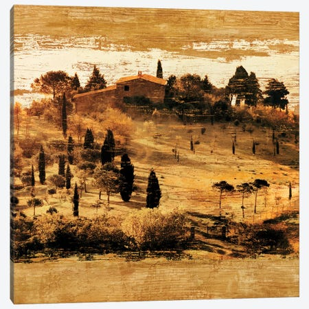 Tuscan Countryside II Canvas Print #CFL4} by Colin Floyd Canvas Wall Art