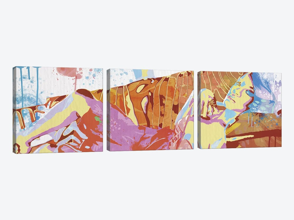Reclining Sentimental by 5by5collective 3-piece Canvas Artwork