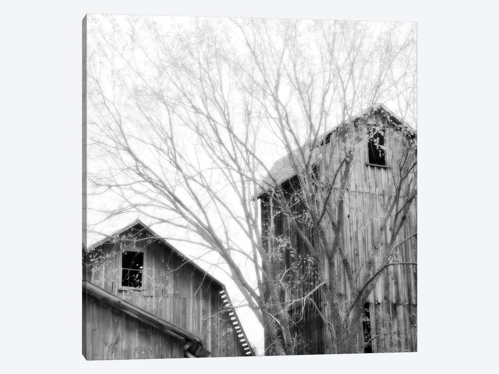 Barn Windows by Chip Forelli 1-piece Canvas Art Print