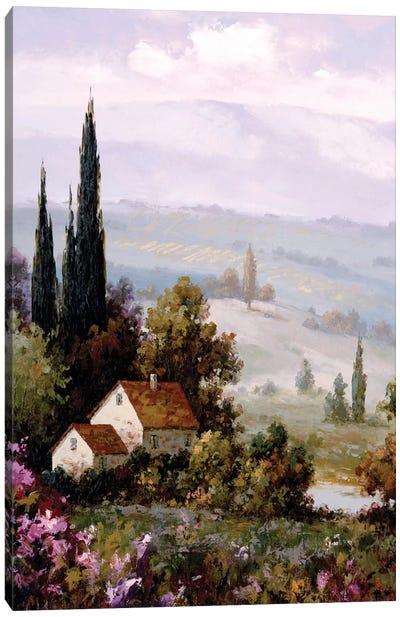 Country Comfort II Canvas Art Print