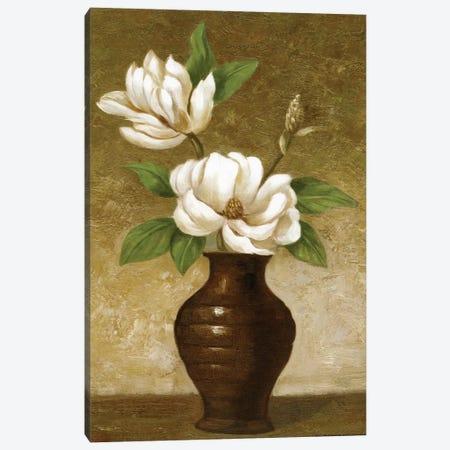 Flowering Magnolia Canvas Print #CGA5} by Charles Gaul Canvas Art