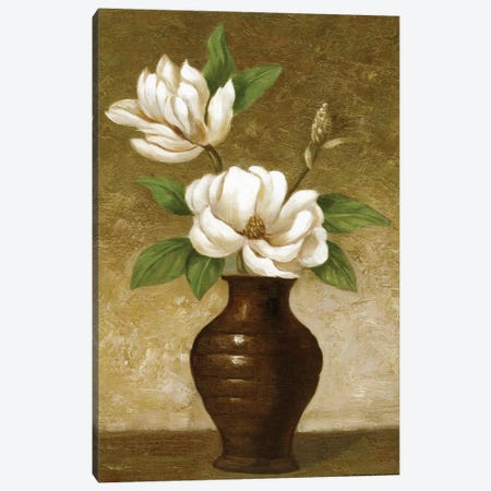 Flowering Magnolia Canvas Print #CGA5} by Charles Gaul Canvas Art