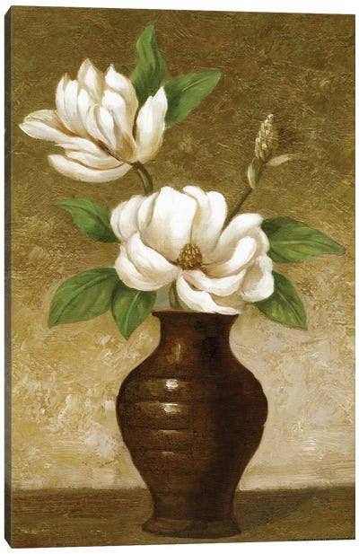 Flowering Magnolia Canvas Art Print