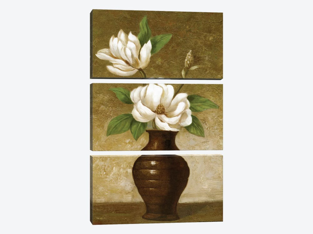 Flowering Magnolia by Charles Gaul 3-piece Canvas Art