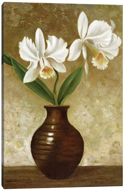 Flowering Orchid Canvas Art Print