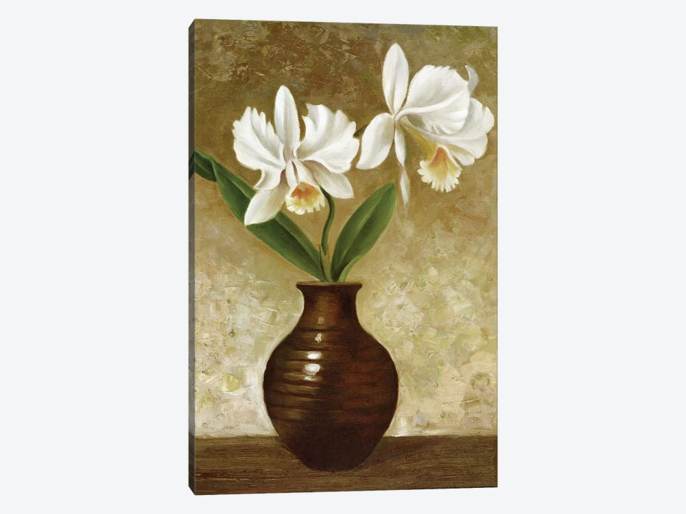 Flowering Orchid by Charles Gaul 1-piece Canvas Print