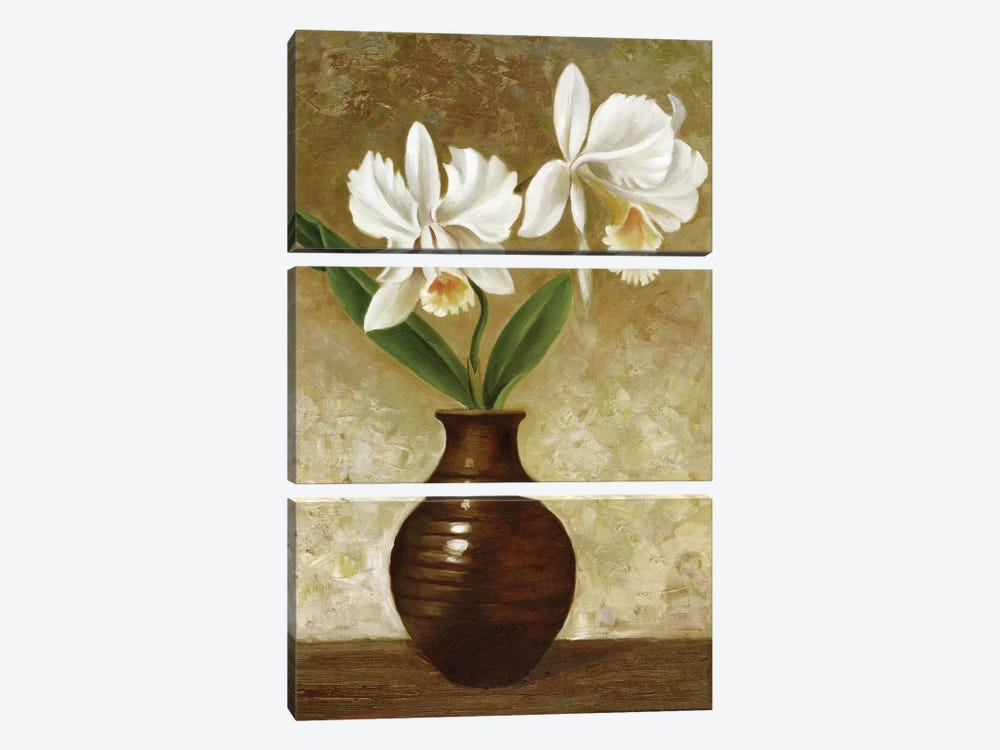 Flowering Orchid by Charles Gaul 3-piece Canvas Art Print