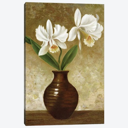 Flowering Orchid Canvas Print #CGA6} by Charles Gaul Canvas Artwork