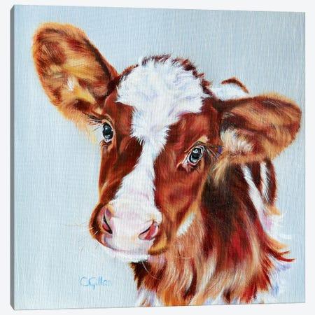 Freddie Canvas Print #CGL11} by Carol Gillan Canvas Print
