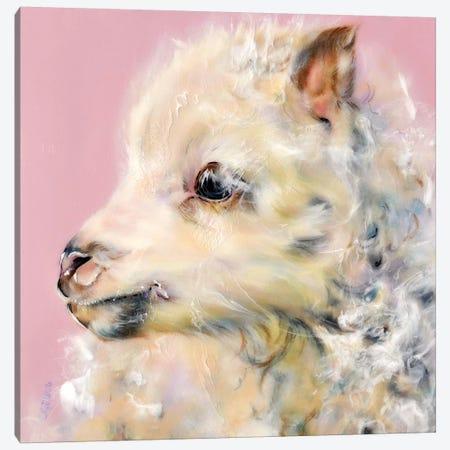 Frosting Canvas Print #CGL12} by Carol Gillan Canvas Art Print