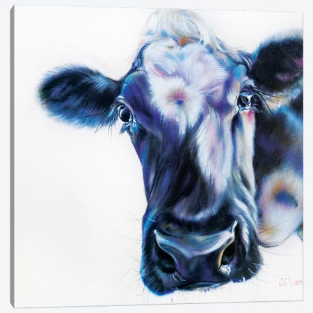 Howdy Canvas Print #CGL16} by Carol Gillan Canvas Art