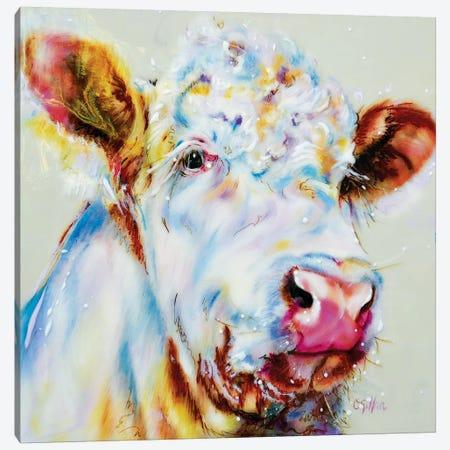 Ice Canvas Print #CGL17} by Carol Gillan Canvas Artwork