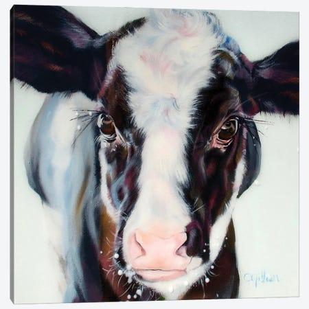 Liam Canvas Print #CGL23} by Carol Gillan Canvas Artwork