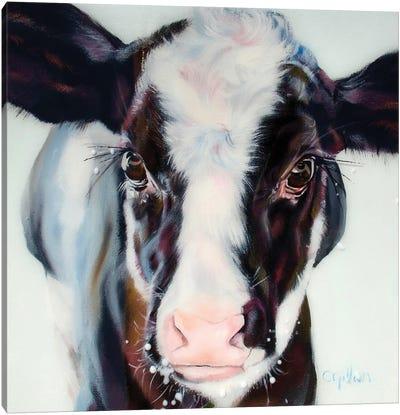 Liam Canvas Art Print