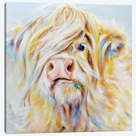 Munrodandelion Canvas Print #CGL31} by Carol Gillan Canvas Art Print