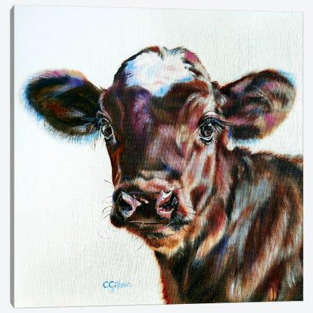 Olivia Canvas Print #CGL35} by Carol Gillan Canvas Artwork