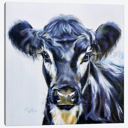 William Canvas Print #CGL48} by Carol Gillan Canvas Art